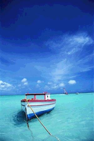 http://www.postais.net/images/postais/paisagens/13.jpg
